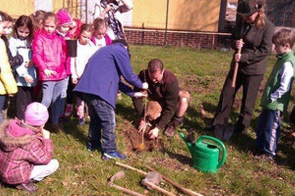 Deti sadili stromčeky spolu s lesníkmi.