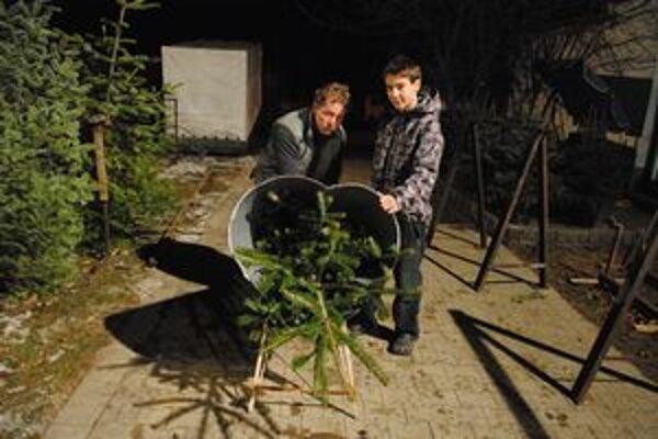 Predvianočné dni sú u Gadušovcov plné práce a stresu, vianočné stromčeky putujú do domácností.