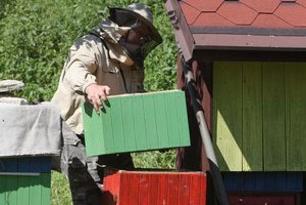Chov včiel má v Spišskom Podhradí zelenú.