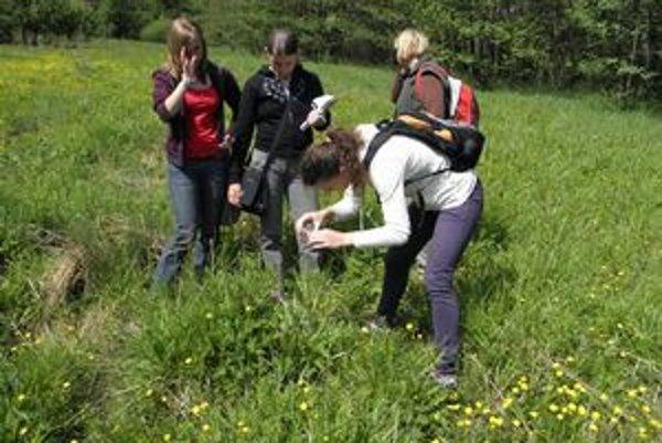 Mapovanie orchideí. Kvety školáci hľadali na Zahure pri Spišských Vlachoch.