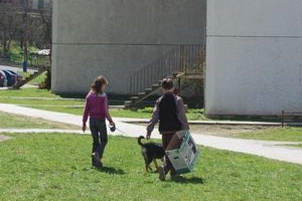 Poplatok za psov nezvyšovali. Zostal na úrovni 5 €.
