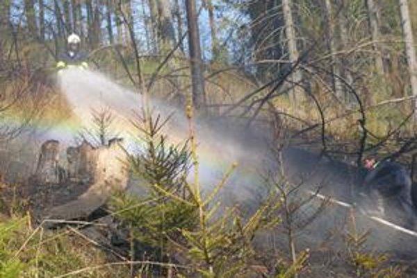 Plamene. Ničivý požiar zachvátil plochu asi tri hektáre.