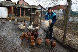 Jeden z obyvateľov Domu na polceste Ivan Lendel kŕmi hydinu na farme.