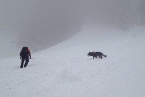Pátranie na lavínisku. Našťastie, pod snehom nikto nebol...