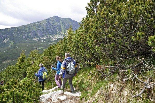 Turisti na chodníku smerom do Furkotskej doliny po ukončení sezónnej uzávery a otvorení turistických chodníkov vo Vysokých Tatrách.