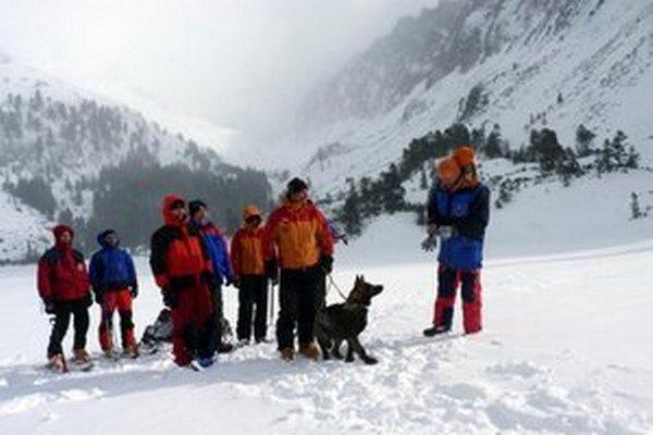 V extrémnom vetre majú psy aj psovodi nefalšované zimné tatranské podmienky.