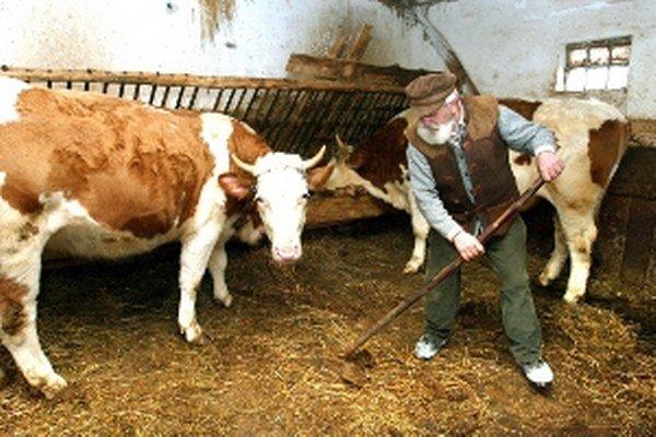 Zvieratám sa musí gazda venovať aj počas sviatkov.