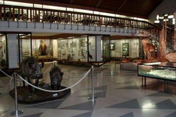 Múzeum TANAP-u je opäť otvorené.