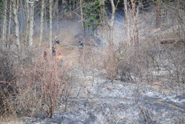 Hasiči požiar zvládli. Pri hasení pomáhal aj hasičský útvar ŽSR.