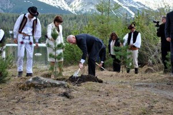 Sadenie stromčekov. Hlavy štátov V4 sa pri jazere zhostili práce zodpovedne.