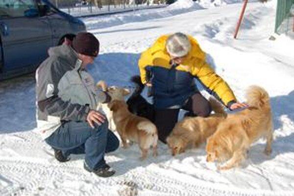Psičkárka. Menších psíkov síce nemala na vôdzke, ale od svojej panej sa ďaleko nepohli.