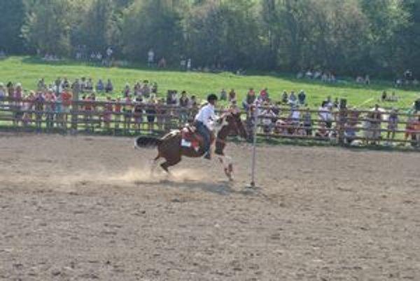 Rýchlostná disciplína. Jazdci museli robiť pomedzi tyče na koňoch slalom.