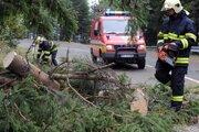 Tatranské cesty zahatali popadané stromy.