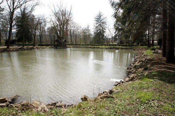 Muž sa pri lovení rýb pravdepodobne pošmykol a spadol do rybníka. (Ilustračná snímka)