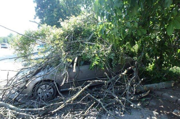 Hasiči odstraňovali aj spadnuté stromy.