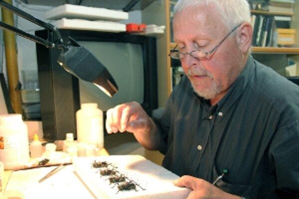 Pavol Arpáš  svoju zbierku obohatil o hmyz z Maroka.
