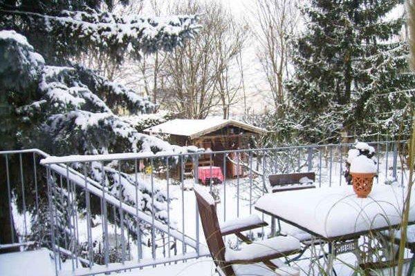 Záhrada v zime. Mala by vyzerať takto, ale tohto roku po snehu nieto ani chýru, ani slychu...