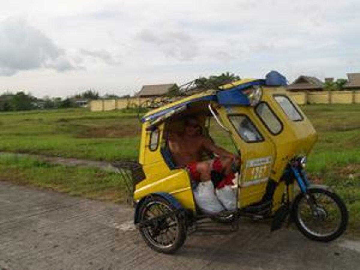 veľký péro Filipínsky