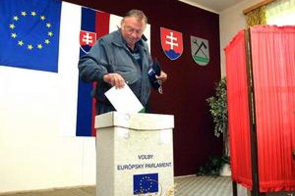 Eurovoľby. Prvýkrát sme volili poslancov do Európskeho parlamentu v roku 2004.