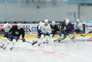 Na hokejistov Nitry čaká druhý rok po sebe účinkovanie v Lige majstrov.