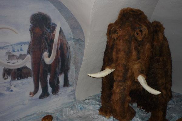 Súčasťou historickej expozície je aj replika mamutieho mláďaťa.