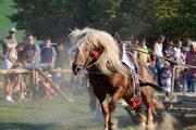 Furmanskú súťaž organizujú v Detve už štrnásť rokov.