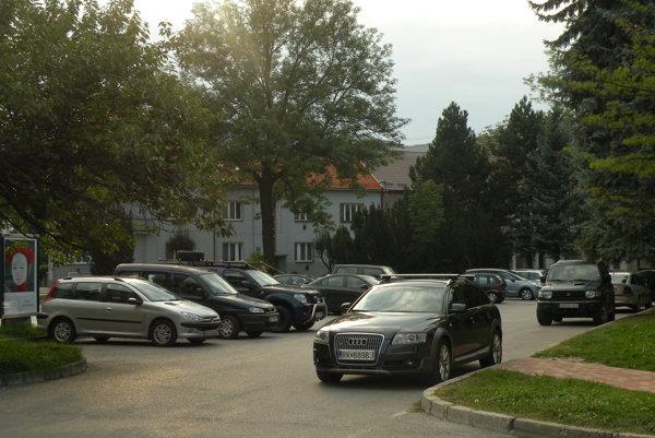 V centre mesta je veľa bezplatných parkovacích miest. Daňou za to je, že autá tam stoja celé hodiny, ba aj dni.