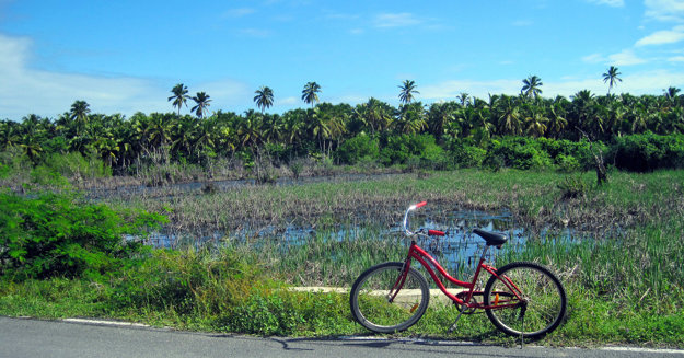 Punta Cana ukrýva svoje krásy aj vo vnútrozemí.