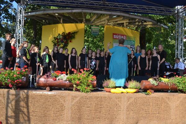 Septemthillis. Medzinárodne uznávaný domáci spevácky zbor.