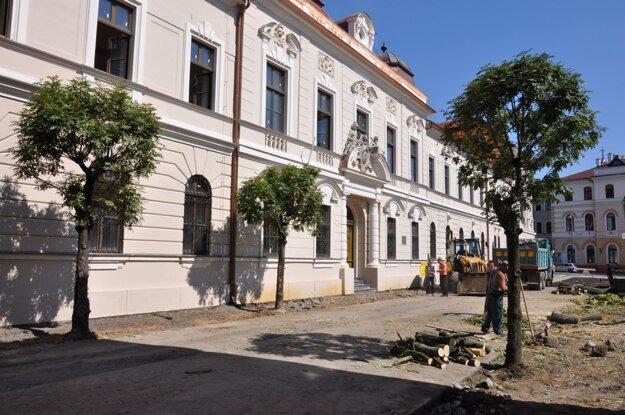 Výrub stromov na Ulici Dr. Herza.