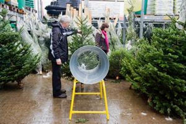 O cene, ktorú za strom zaplatíte, rozhoduje druh, výška a u koho nakupujete.