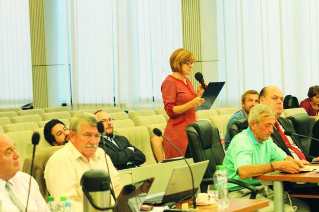 Zástupcovia petičného výboru po hlasovaní poslancom zatlieskali.