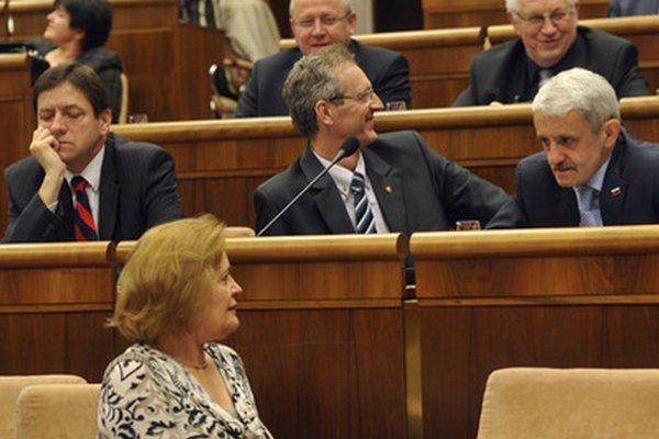 Ivan Štefanec (v strede).