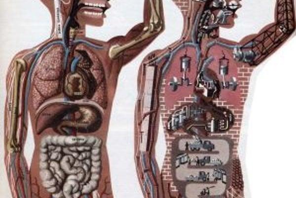 Ľudské telo oddávna fascinuje nielen vedcov ale aj umelcov.