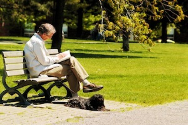 Kliešť na vás môže číhať aj v mestskom parku, kam ho prinesú napríklad vtáky...