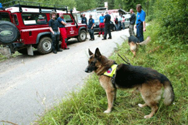 Pri hľadaní nezvestných často pomáhajú aj služobné psy.