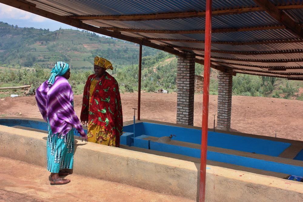 Umývacia stanica na kávové zrná, ktorú družstvo Nyampinga vybudovala.