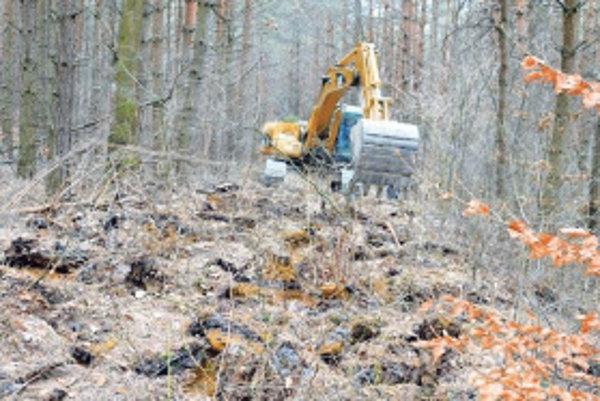 Z nepoužívaných ciest zákon káže spraviť opäť les.