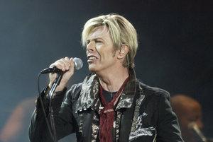 David Bowie na svojom poslednom koncertnom turné Reality Tour, po ktorom sa na desať rokov stiahol z verejného života.