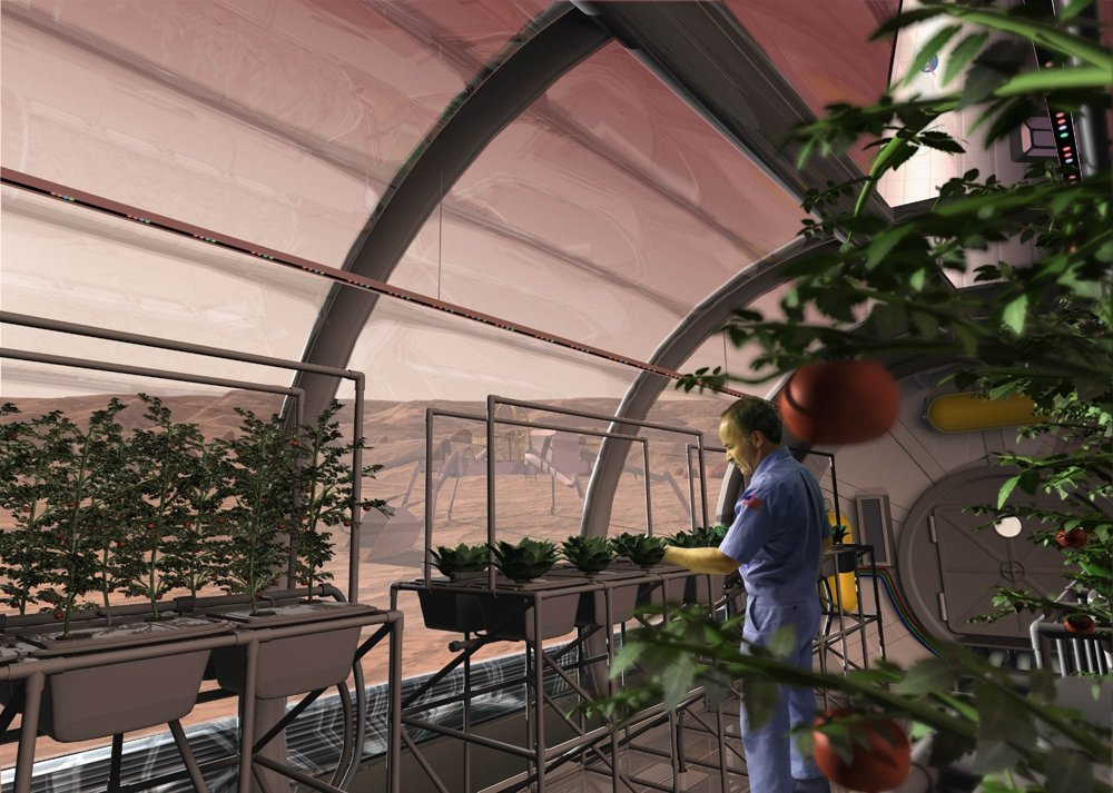 Vizualizácia pestovania zemiakov na Marse.