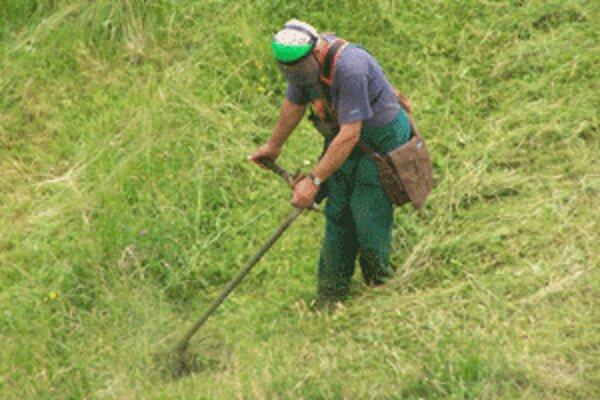 Pracovníci Tezasu kosia v týchto dňoch naplno. Doháňajú výpadok, ktorý spôsobilo počasie.