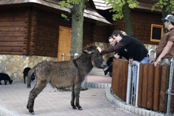 Zoo Bojnice sa snaží vytvárať lepšie podmienky pre život zvierat, ale aj pre návštevníkov.