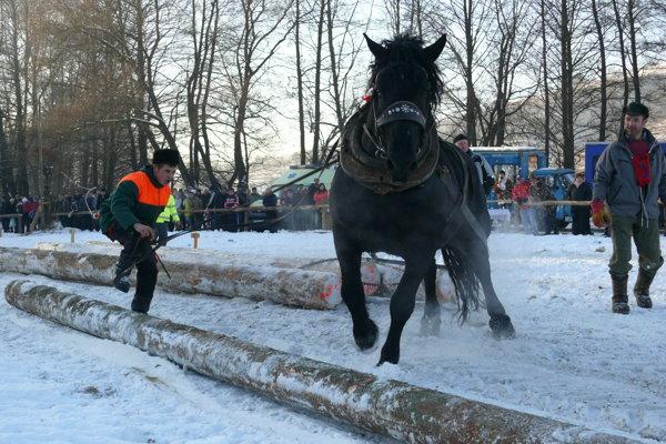 Zimná súťaž v Hriňovej.