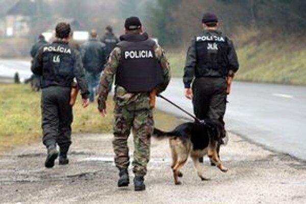 Trenčianski policajti boli vlani v objasňovaní kriminality úspešnejší ako v roku 2008.