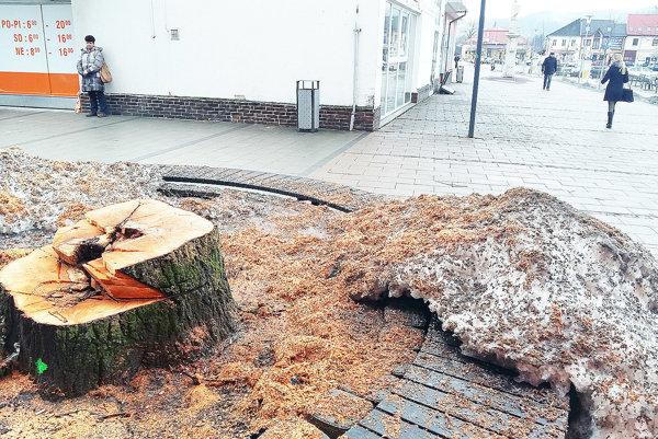 Košatá lipa bola posledným vysokým azeleným stromom na trstenskom námestí.