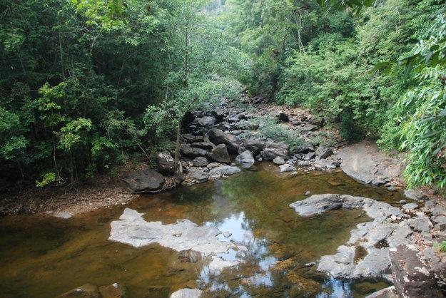 Príroda v okolí Khlong Plu Waterfall