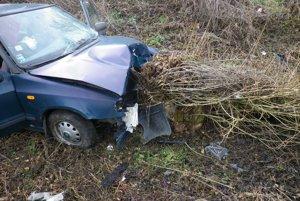 Auto zišlo z vozovky a následne narazilo do pňa stromu.