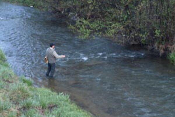 Rýbari sa nemusia znepokojovať, v Handlovke k úhynu rýb nedošlo.
