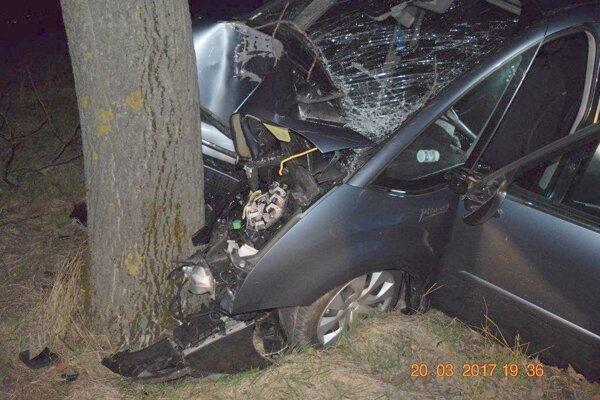 Vodič neprežil náraz do  stromu.