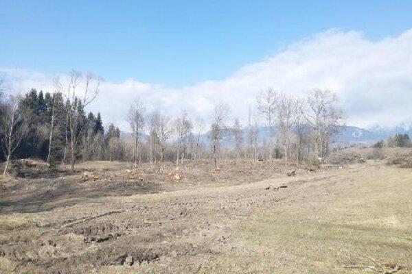 Obec musí zabezpečiť, aby pozemky znova nezarástli krovinami.